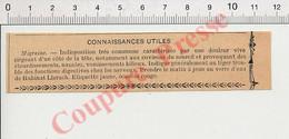 Publicité 1907 Eau Minérale Rubinat Llorach Migraine Maladie Remède 198PF54 - Non Classificati
