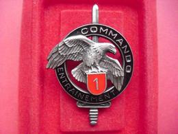 Brevet  COMMANDO    ENTRAINEMENT N° 1   ( DELSART ) - Army