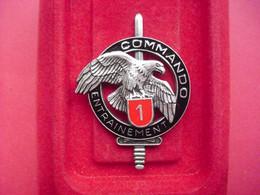 Brevet  COMMANDO    ENTRAINEMENT N° 1   ( DELSART )  ( Variante ) - Army