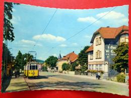 Tabarz - Waldbahn - 1962 - Café Waldbahn - Straßenszene Haltestelle - Thüringer Wald - Thüringen - Tabarz