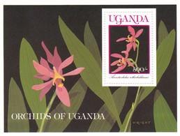 Uganda Hb 100 - Uganda (1962-...)