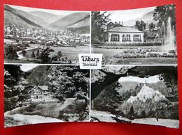 Tabarz - 1982 - Lesehalle - Massemühle - Aschenbergstein - Echt Foto - Thüringer Wald - Thüringen - Tabarz