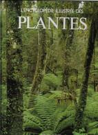 Dessain Et Tolra L'encyclopédie Illustrée Des Plantes - Giardinaggio