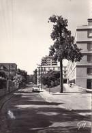 SAINT-CLOUD - Rue Du 18 Juin - Saint Cloud