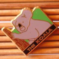 Joli Pin's Koala The Koala, Zamac, Arthus Bertrand, TBQ, Pins Pin. - Arthus Bertrand