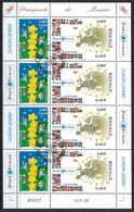 NZ-/-105- EUROPA 2000 -  FEUILLET N° 2248/49, OBL.  , Cote 12.00 €, IMAGE DU VERSO SUR DEMANDE - Usados
