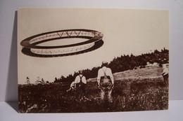 LE CERF-VOLANT En Forme D'Anneau - RING KITE -   -  ( Pas De Reflet Sur L'original ) - Altri
