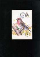 Belgie 2457 Maximumkaart Buzin Birds Bruxelles - 1981-1990