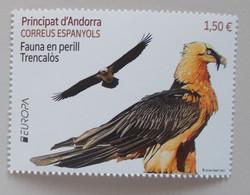 Andorra( Spanish) 2021 Cept PF - 2020