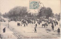 FRANCIA - ALENCON - Mercato Dei Cavalli, Animata, Viag.1905 - M-21-150 - Sonstige