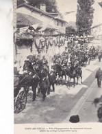 01-PONT DE VEYLE FETE D INAUGURATION DU MONUMENT GOUJON - Sonstige Gemeinden