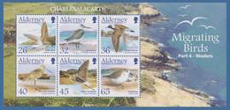 ALDERNEY AURIGNY 2005  MIGRATING BIRDS  WADERS  M.S.  S.G. MS 265  U.M.  N.S.C. - Alderney
