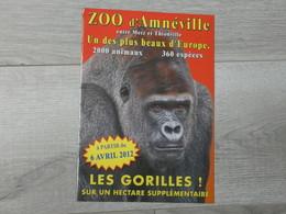ZOO D' AMNEVILLE 2012. LES GORILLES. - Autres