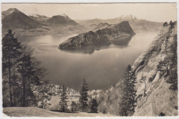 Vitznau  Am Vierwaldstättersee - LU Lucerne