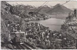 Carte Photo - Vitznau  Mit Rigi-Bahn Und Alpen - LU Lucerne