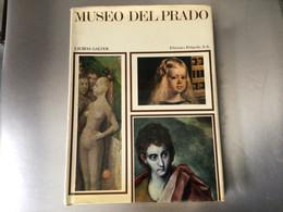 Museo Del Prado - Cultural
