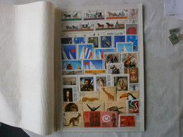 Destockage Pologne - Lots & Kiloware (mixtures) - Max. 999 Stamps
