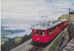 Rigi, Carte Postale Non Circulée, Suisse. - LU Lucerne