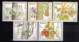 BOTSWANA/ Neufs**/MNH**/ 1976 - Noel / Fleurs Et Fruits D'arbres - Botswana (1966-...)