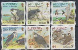 Alderney N° 146 / 51 XX Protection De La Nature : Le Faucon Pèlerin, La Série Des 6 Valeurs Sans Charnière, TB - Alderney