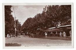 Perpignan - Boulevard Wilson - Grand Café Du Castillet - Perpignan