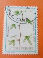 SAO TOME E PRINCIPE - Saint-Thomas Et Prince - Timbre 1983 : Plantes Médicinales - Mimosa Pigra - Sao Tome And Principe