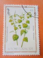 SAO TOME E PRINCIPE - Saint-Thomas Et Prince - Timbre 1983 : Plantes Médicinales - Piperonia Palucilla - Sao Tome And Principe