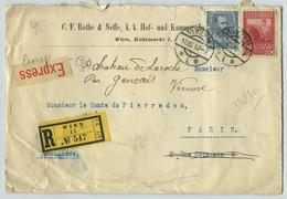 Recommandé 1910 De Vienne Pour Paris Redirigé à Gençay (Vienne). Ordre Souverain De Malte. Médailles Rothe & Neffe Wien. - Cartas
