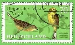 BRD 2019 Mi.Nr. 3463 , EUROPA CEPT Heimische Vögel - Gestempelt / Fine Used / (o) - Usados