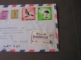 Iraq Cv. - Iraq