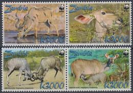 ** 2008 WWF: Nagy Kudu Sor Mi 1606-1609 + 4 FDC - Unclassified