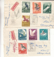 Hongrie - Lettre Exprès De 1959 - Oblit Budapest - Oiseaux - échassiers - Briefe U. Dokumente