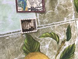 ITALIA IMPERIALE MARRONE 1 VALORE - America (Other)