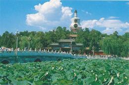 BEIJING - PARK BEIJING (10 X 15) - China