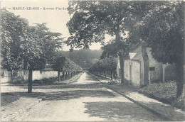 11. MARLY-LE-ROI . AVENUE FITZ-JAMES . CARTE AFFR AU VERSO LE 6 SEPT 1905 . 2 SCANES - Marly Le Roi