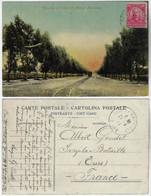 Brazil Rio Grande Do Sul 1914 PostcardMain Avenue Parque Pelotense In Pelotas Editor Casa A Miscelânea Stamp - Altri
