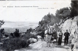 83  TOULON   ROUTE CONDUISANT AU FARON - Toulon