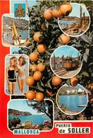 CPSM Mallorca-Puerto De Soller-Multivues     L602 - Mallorca