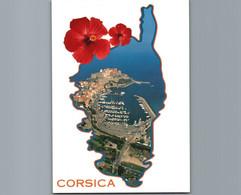 2B- Haute Corse -  Calvi - Cpm - Corsica - Calvi