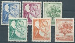 LOT DE 6 TIMBRES THEME FLEUR ARBRE  / ** / PARAGUAY / INDEPENDENCIA 1961 - Paraguay