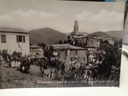 Cartolina Bergassana Frazione Di Sesta Godano, In Provincia Di La Spezia Scorcio Panoramico - La Spezia