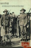 """LA GUERRE 1914-1915-1916--"""" Les Bulldogs """" Mascottes Des Soldats Australiens En Egypte - Weltkrieg 1914-18"""