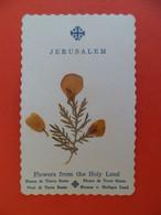 Ima Pieuse +ou- 1910 - Religion Catholique Holy Land JERUSALEM - Fleur De Terre Sainte - Religion & Esotericism