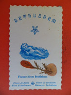 Ima Pieuse +ou- 1910 - Religion Catholique Holy Card Fleurs De BETHLEHEM Bethléem Cisjordanie à 10 Km Jerusalem Jesus - Religion & Esotericism