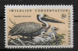 USA  N° 965    * * Oiseaux  Pelican - Pelicans