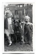 Grande Photo D'une Petite Fille Et Un Petit Garcon Avec Leurs Chien Au Milieu Posant Dans Leurs Jardin - Personnes Anonymes