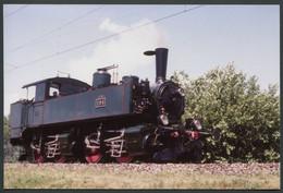 Photo Format CPSM - Suisse - Locomotive Vapeur N° 196 - Voir Scan - Trains