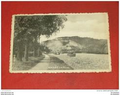 ANHEE  -    La Meuse - Anhée