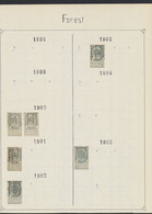 """Fine Barbe / Armoiries - Pages De Collection + Préo """"Forest"""" (1900 > 1911) / Cote 120e + - Roulettes 1900-09"""
