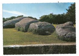 Locmariaquer (56) Le Grand Menhir Brise - Locmariaquer
